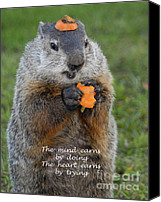Groundhog Canvas Prints - The heart earns by trying Canvas Print by Paul W Faust -  Impressions of Light
