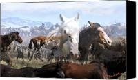 Montana Digital Art Canvas Prints - The Herd 2 Canvas Print by Kae Cheatham