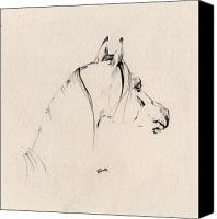Horse Drawing Canvas Prints - The Horse Sketch Canvas Print by Angel  Tarantella