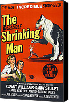 1950s Movies Canvas Prints - The Incredible Shrinking Man, Bottom Canvas Print by Everett