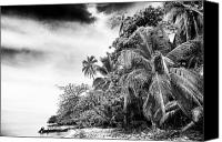 Cay Canvas Prints - The Island in Black and White Canvas Print by John Rizzuto