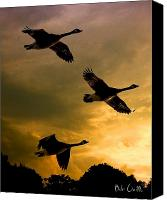 Geese Canvas Prints - The Journey South Canvas Print by Bob Orsillo