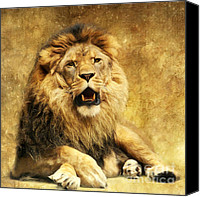 Lion Mixed Media Canvas Prints - The King Canvas Print by Angela Doelling AD DESIGN Photo and PhotoArt