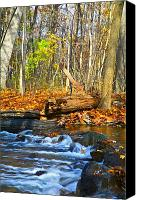 Fall Foliage Artwork Canvas Prints - The last of the fall color Canvas Print by Robert Pearson