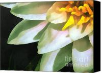 Dewy Painting Canvas Prints - The lily flower Canvas Print by Odon Czintos