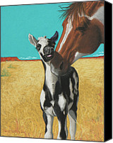 Wild Horse Pastels Canvas Prints - The Little Mustang Canvas Print by Tracy L Teeter