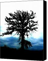 Akermans Art Canvas Prints - The Lonely Tree Canvas Print by Beth Akerman