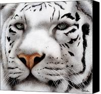 Tiger Canvas Prints - The Maharajah... Canvas Print by Will Bullas