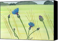 Grass Drawings Canvas Prints - The Meadow Canvas Print by Eva Ason
