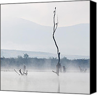 Dam Canvas Prints - The Messengers Canvas Print by Evgeni Dinev