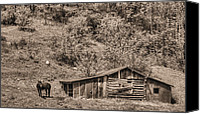Old Cabins Canvas Prints - The Mountain Retreat BW Canvas Print by JC Findley
