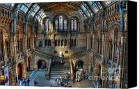 D700 Digital Art Canvas Prints - The Natural History Museum London UK Canvas Print by Donald Davis