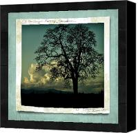 Decorating Mixed Media Canvas Prints - The Old Oak Canvas Print by Bonnie Bruno