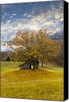 Verticle Canvas Prints - The Old Oak Tree Canvas Print by Debra and Dave Vanderlaan