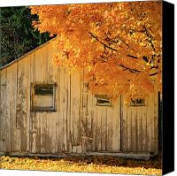 Fall Foliage Artwork Canvas Prints - The old shack Canvas Print by Robert Pearson