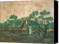 Olive Canvas Prints - The Olive Pickers Canvas Print by Vincent van Gogh