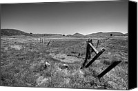 Barbed Wire Fences Photo Canvas Prints - The Open Pasture - Black and White Canvas Print by Peter Tellone