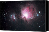 Nebula Canvas Prints - The Orion And The Running Man Nebulae Canvas Print by Pat Gaines
