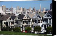 Painted Ladies Canvas Prints - The Painted Ladies Canvas Print by Steve Parr