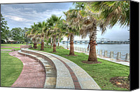 Chambers Canvas Prints - The Palms of Water Front Park Canvas Print by Scott Hansen