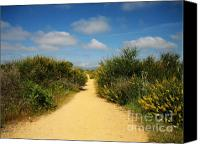 Unique Art. Photo Canvas Prints - The Path Is The Way Canvas Print by Oliver Johnston