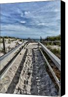 Barnegat Canvas Prints - The Path Canvas Print by Louis Dallara