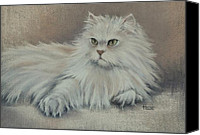 Cats Pastels Canvas Prints - The Persian Prince Canvas Print by Cynthia House