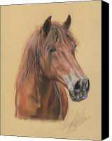 Equestrian Pastels Canvas Prints - The Peruvian Paso Fino Mijo Canvas Print by Terry Kirkland Cook