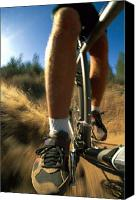 Pedals Canvas Prints - The Photographer Captures A Close View Canvas Print by Barry Tessman