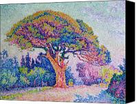 Signac Canvas Prints - The Pine Tree at Saint Tropez Canvas Print by Paul Signac
