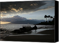 Hawaii Beach Art Canvas Prints - The Realm of Joy and Pleasure  Canvas Print by Sharon Mau