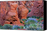 Desert Canvas Prints - The Red and the Blue Canvas Print by Christine Till