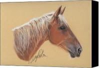 Equestrian Pastels Canvas Prints - The Red Horse Canvas Print by Terry Kirkland Cook