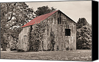 Selective Color Canvas Prints - The Red Roof Canvas Print by JC Findley