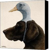 Lab Canvas Prints - The Reluctant Retriever... Canvas Print by Will Bullas