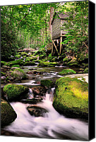 Mountain Stream Canvas Prints - The Roaring Fork and Reagans Mill Canvas Print by Thomas Schoeller