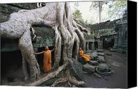 Religious Structures Canvas Prints - The Roots Of A Strangler Fig Creep Canvas Print by Paul Chesley