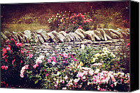 Cultivation Canvas Prints - The Rose Garden Canvas Print by Stephanie Frey