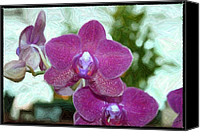 Orchidaceae Mixed Media Canvas Prints - The Royal Orchidaceae Canvas Print by Sharon Spade - Kingsbury