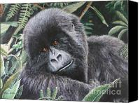 Gorilla Mixed Media Canvas Prints - The Secret Garden Canvas Print by Cindy Weitzel