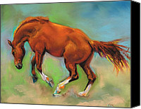 Horse Drawings Canvas Prints - The Sheer Joy of It Canvas Print by Frances Marino