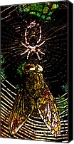 Stain Glass Digital Art Canvas Prints - The Spider and The Fly in Abstract Canvas Print by Wingsdomain Art and Photography