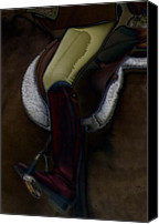 Dressage Canvas Prints - The Straddling Canvas Print by Steven  Digman