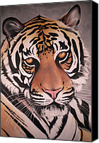 Game Pastels Canvas Prints - The Tiger Canvas Print by Annie Seddon