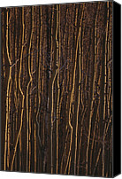 Sangre De Cristo Mountains Canvas Prints - The Trunks Of A Dense Stand Of Aspen Canvas Print by Raul Touzon