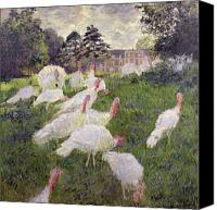 Monet Painting Canvas Prints - The Turkeys at the Chateau de Rottembourg Canvas Print by Claude Monet