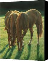 Foal Painting Canvas Prints - The Twins Canvas Print by Karen Coombes