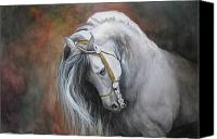 White Horse Painting Canvas Prints - The Unreigned King Canvas Print by Nonie Wideman