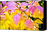Closeup Mixed Media Canvas Prints - The Warm Glow In Autumn Abstract Canvas Print by Andee Photography