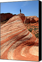 Red Rock Formations Canvas Prints - The Wave Valley of Fire Canvas Print by Pierre Leclerc